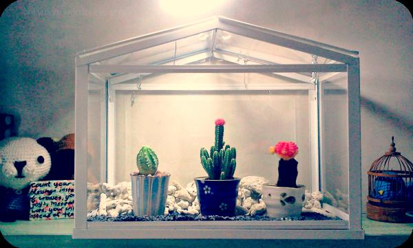 mini diy greenhouse my version salty mom vindruva serre lot de 3 ikea