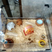 DIY : Hamster Cage - Deluxe Studio Apartment !