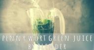 diy pennywort gotu kola green blender juice by saltymom.net sm.png