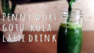 pennywort-gotu-kola-latte-green-juice-by-saltymom-net-sm