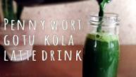 pennywort-gotu-kola-latte-green-juice-by-saltymom-net-sm