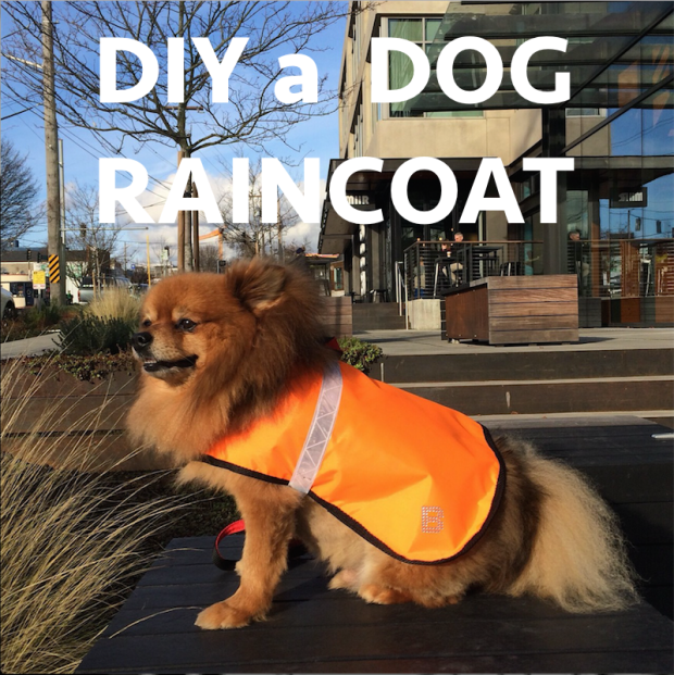 Diy sew a dog raincoat with reflective band
