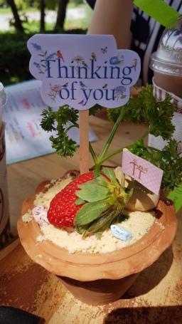 flower-pot-cake-at-tree-and-tide-riverside-cafe
