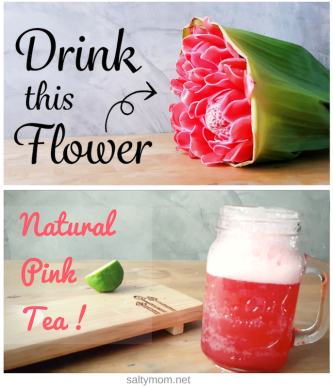 diy pink limeade with torch ginger flower by saltymom.net.png